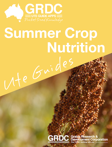 Summer Crop Nutrition