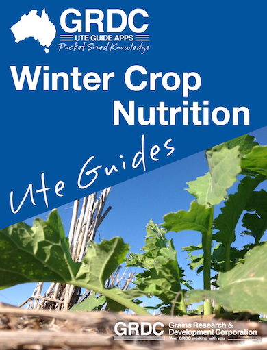 Winter Crop Nutrition